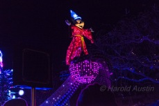 Disneyland 2016-114