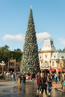 Christmas Tree in Disneyland